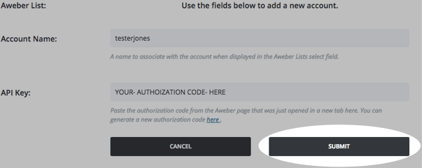 Back in your Divi account, add your login name and paste the authorization code in API Key space and click Submit