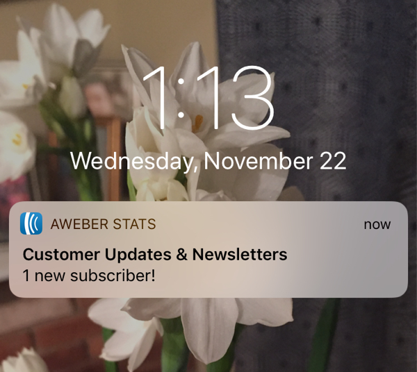 Subscriber notification