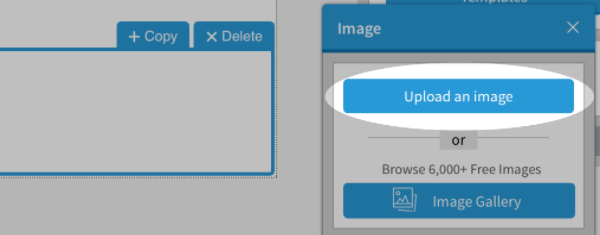Upload an Image button highlighted