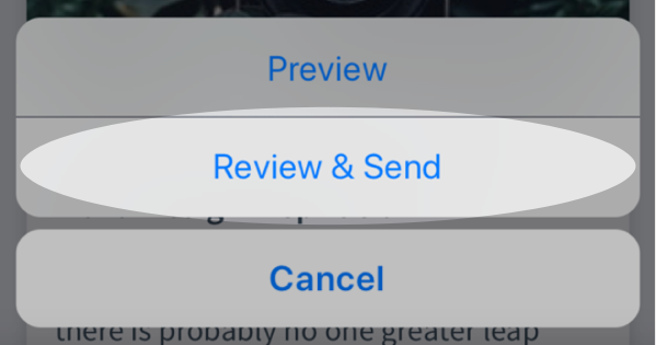 Review and Send button