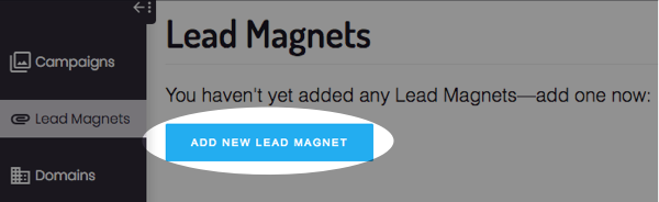 click add lead magnet