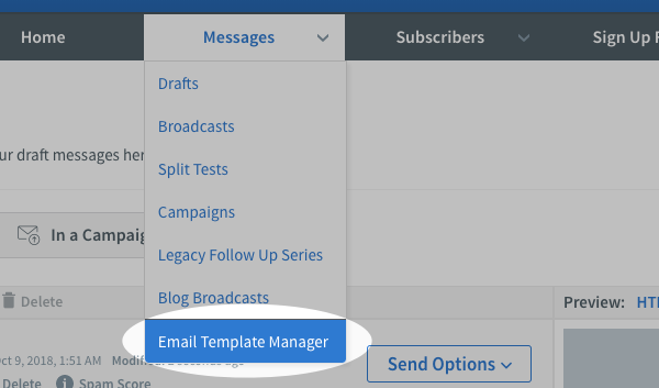 Click the Email Template Manager option