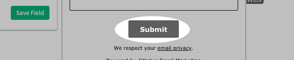 Hit Tab on your keyboard and a basic Submit button will appear