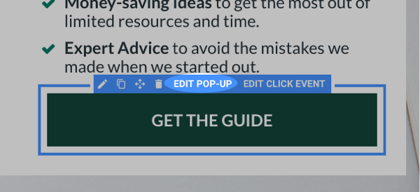 Edit Pop-up