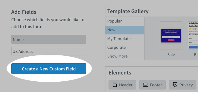 Create a New Custom Field button