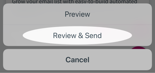 Tap Review & Send button