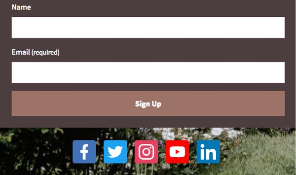 Social icons displayed below Sign Up button