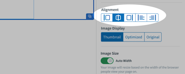 Image alignment options