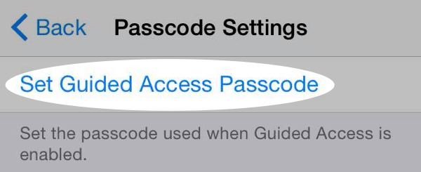 Set Guided Access passcode