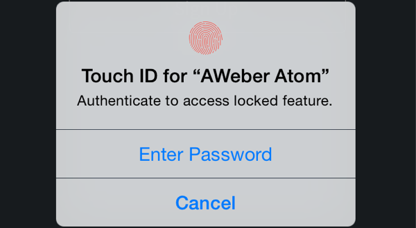 Touch ID example