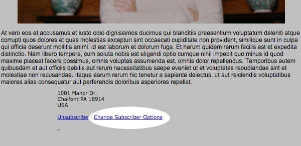 Change Subscribers Options section