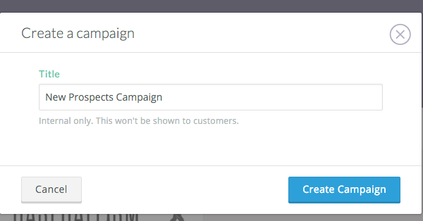 Name your campaign and click Create Campaign